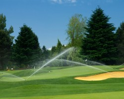 watering-golf-course