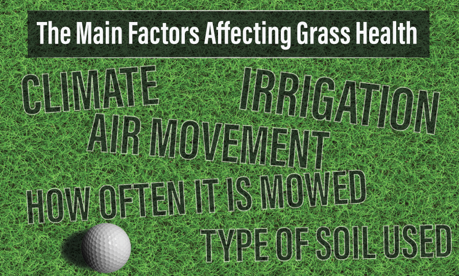 golf-grass-variables