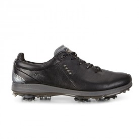 Ecco Biom G2 Gore-Tex Shoes